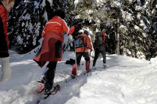 Wear to what snowshoeing grouse advise dress in autumn in 2019